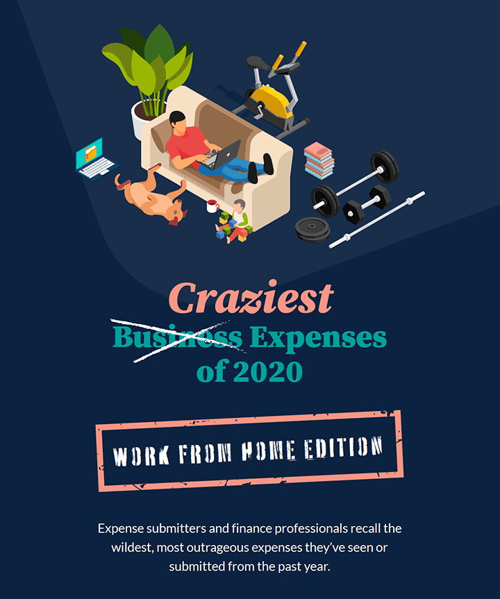 2020 Craziest Expenses: Work From Home Edition