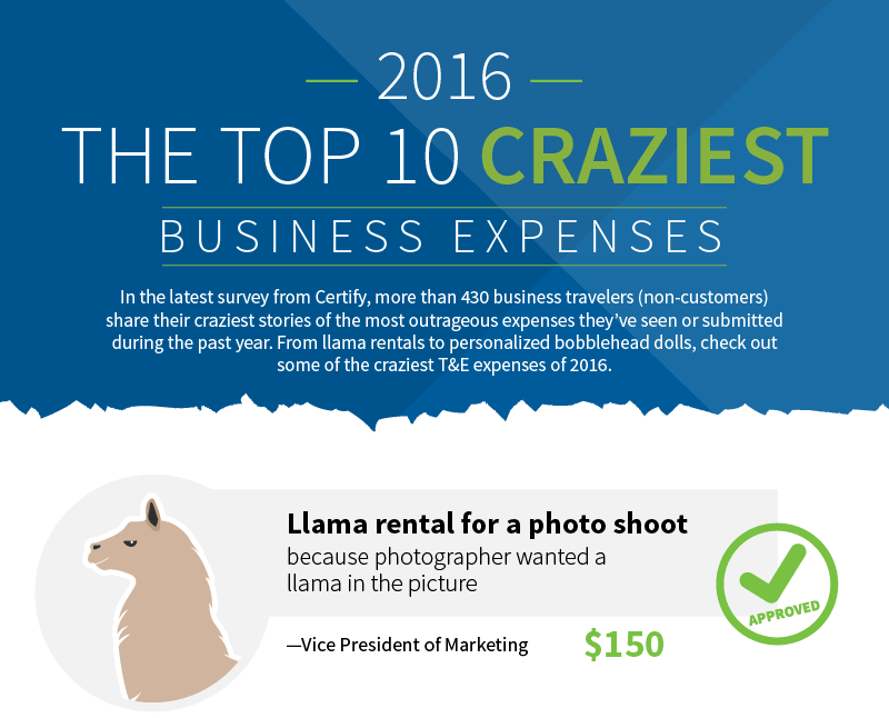 Infographic: The 10 Craziest Business Expenses of 2016
